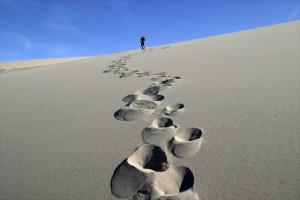Un voyage dans le désert