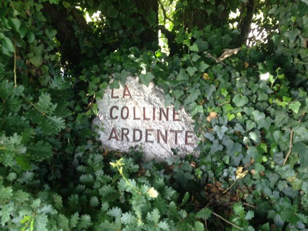 « La colline Ardente » le nom de la colline sur laquelle se trouve la Vigne à Farinet. Photo: Voix d'Exils.