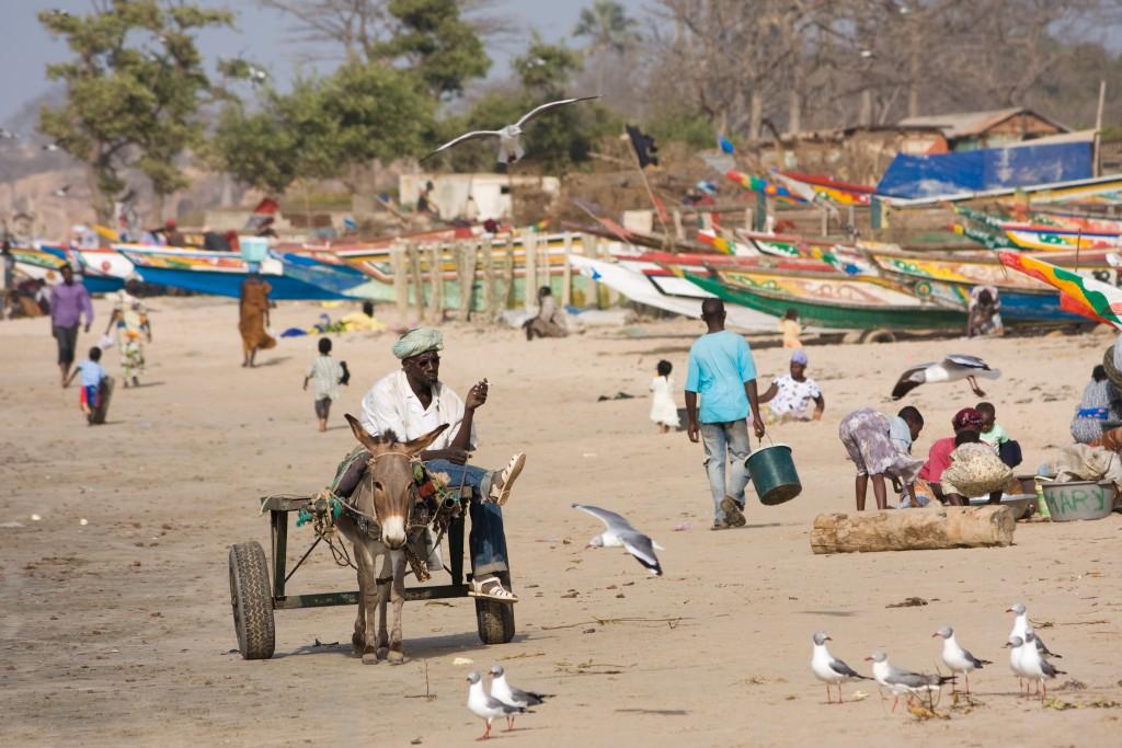 Bord de mer avec une charrette à âne en Gambie. Auteur: Ikiwaner CC BY-SA 3.0