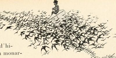 """Image from page 80 of """"Nouvelles histoires sur de vieux proverbes;"""" (1908)  Aucune restriction de droits d'auteur connue."""